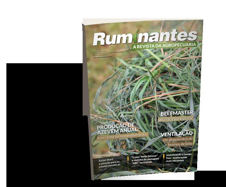 Ruminantes 31
